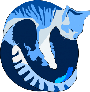 Gnu iceCat browser